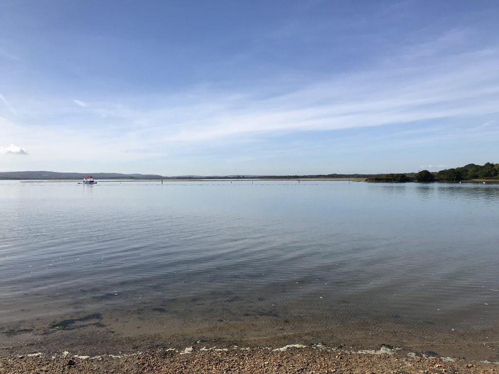Rockley Sea